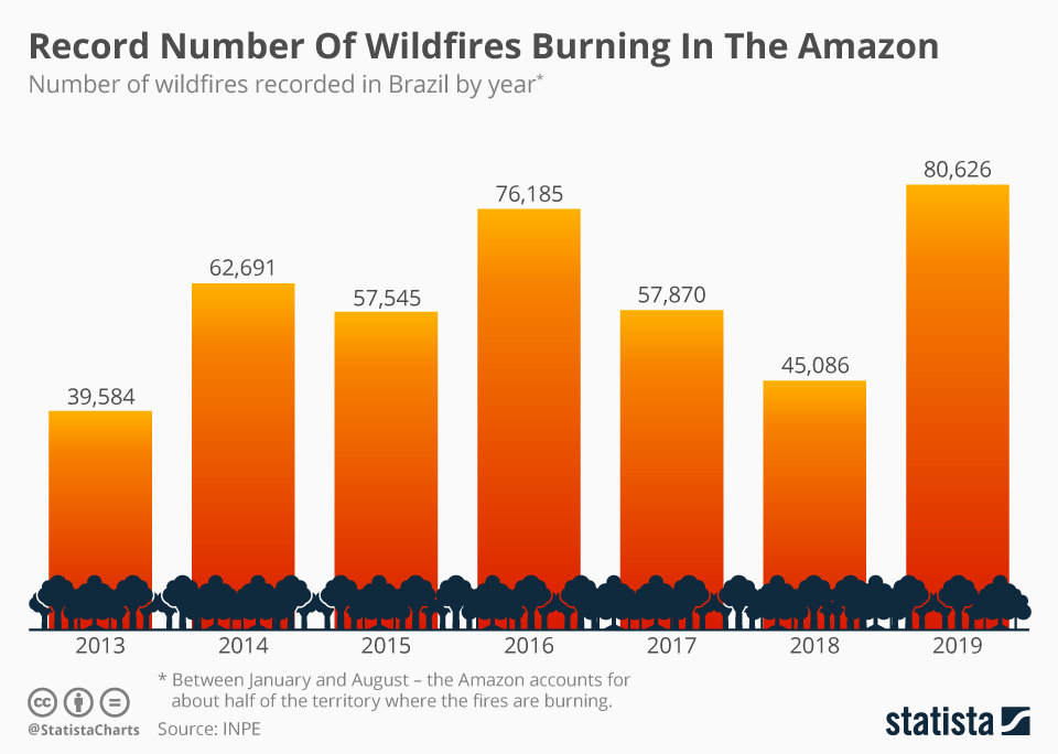 Chart Record Number Of Wildfires Burning In The Amazon Statista