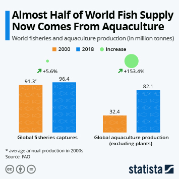 Almost Half of World Fish Supply Now Comes From Aquaculture