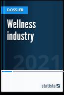 Wellness industry