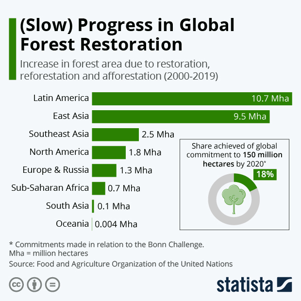 global forest area restored by region