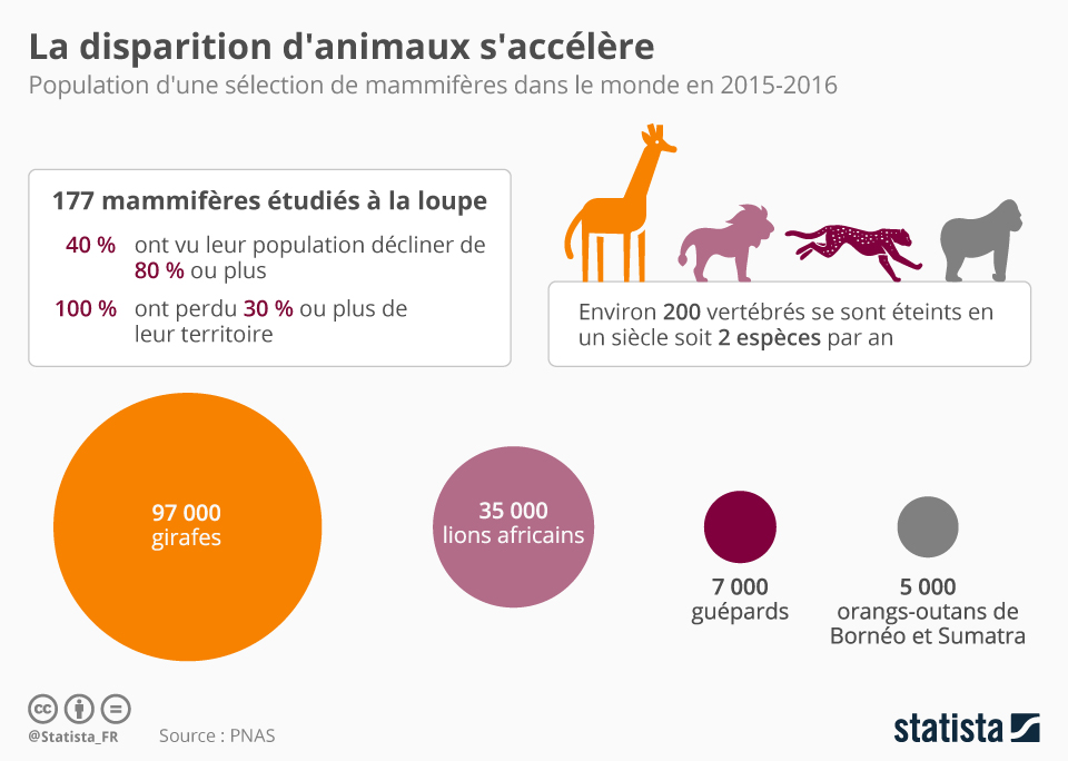Infographie: La disparition d'animaux s'accélère | Statista