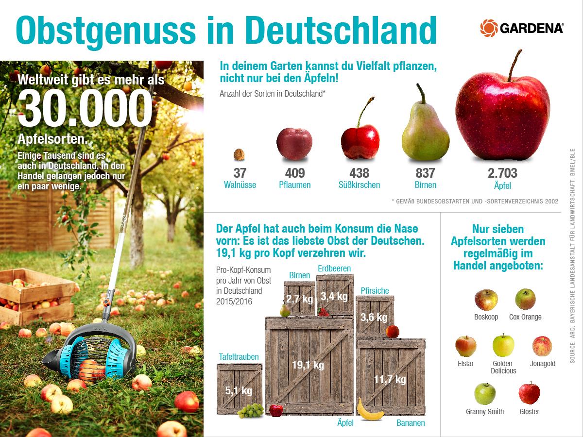 Infografik: Obstgenuss in Deutschland  | Statista