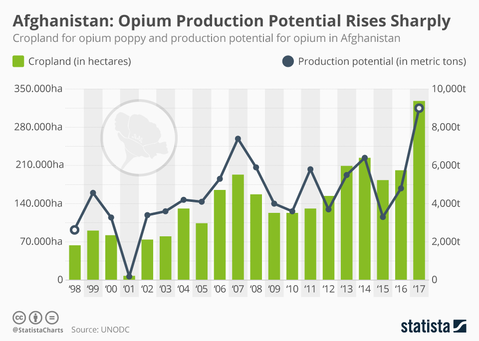 Infographic: Steep Rise in Poppy Cultivation And Production of Opium | Statista