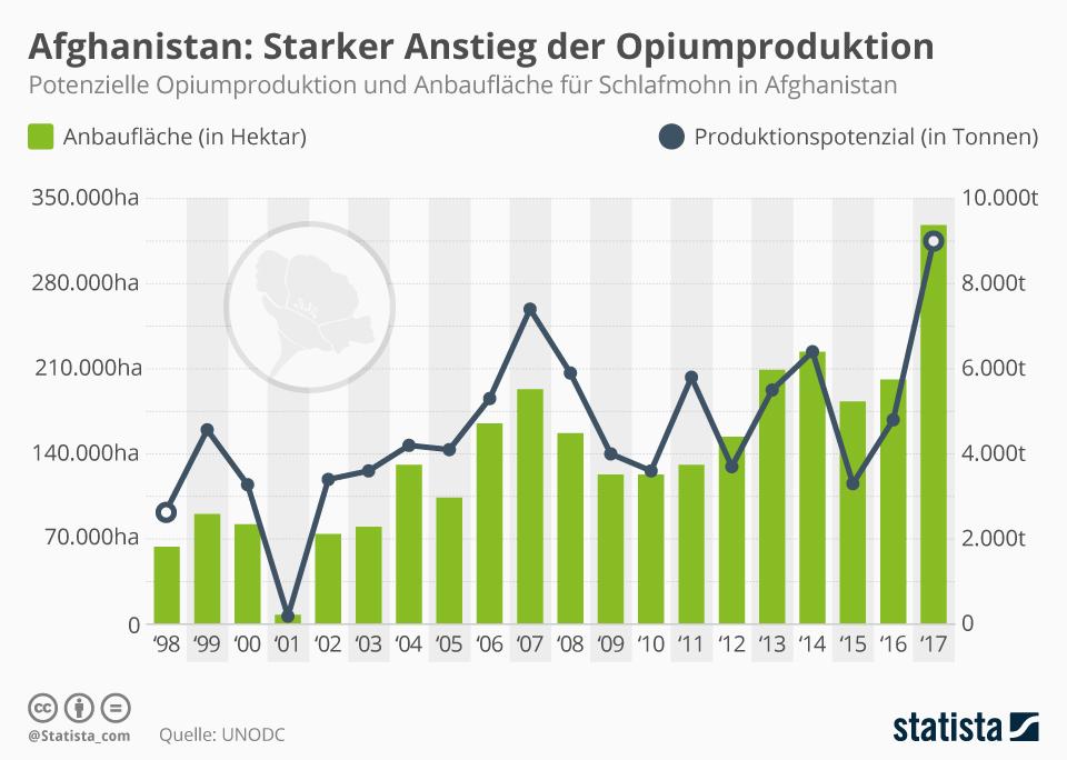 Infografik: Starker Anstieg der Opiumproduktion   Statista