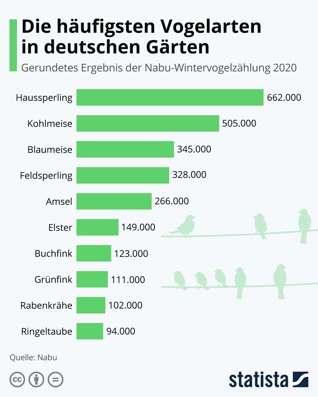 Infografik: Die häufigsten Vogelarten in deutschen Gärten | Statista