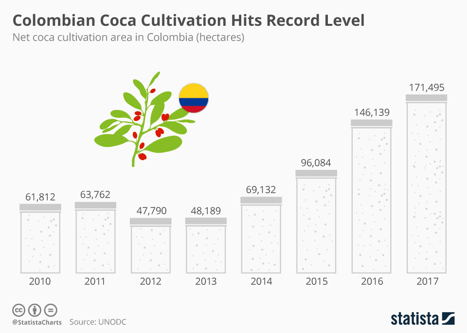Infographic: Colombian Coca Cultivation Hits Record Level  | Statista