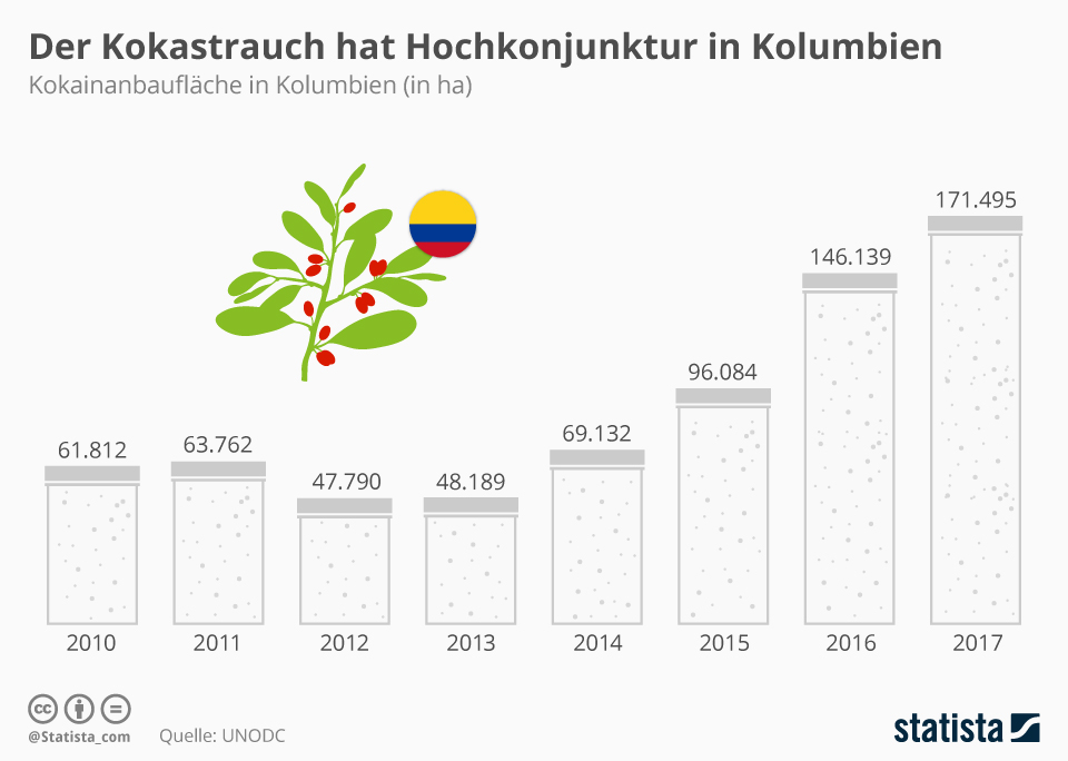 Infografik: Kokastrauch hat Hochkonjunktur in Kolumbien | Statista