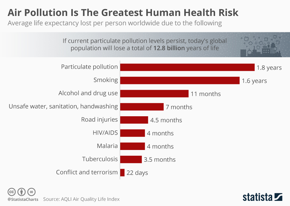 Infographic: Air Pollution Is The Greatest Human Health Risk | Statista