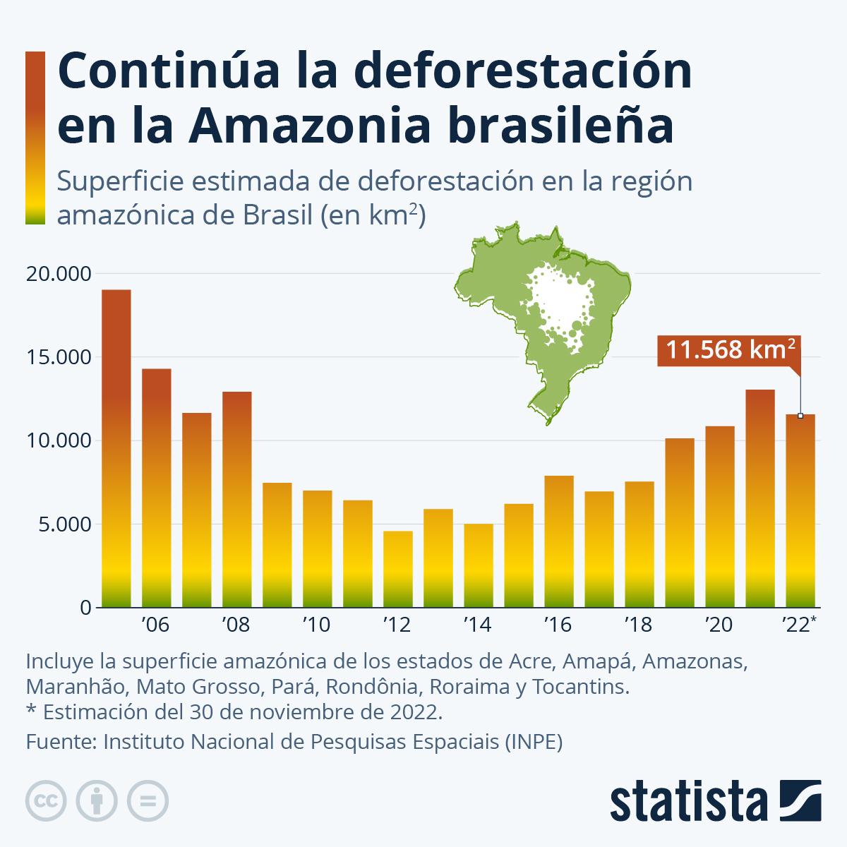 Infografía: La deforestación en la Amazonia brasileña alcanza su nivel más alto en una década | Statista