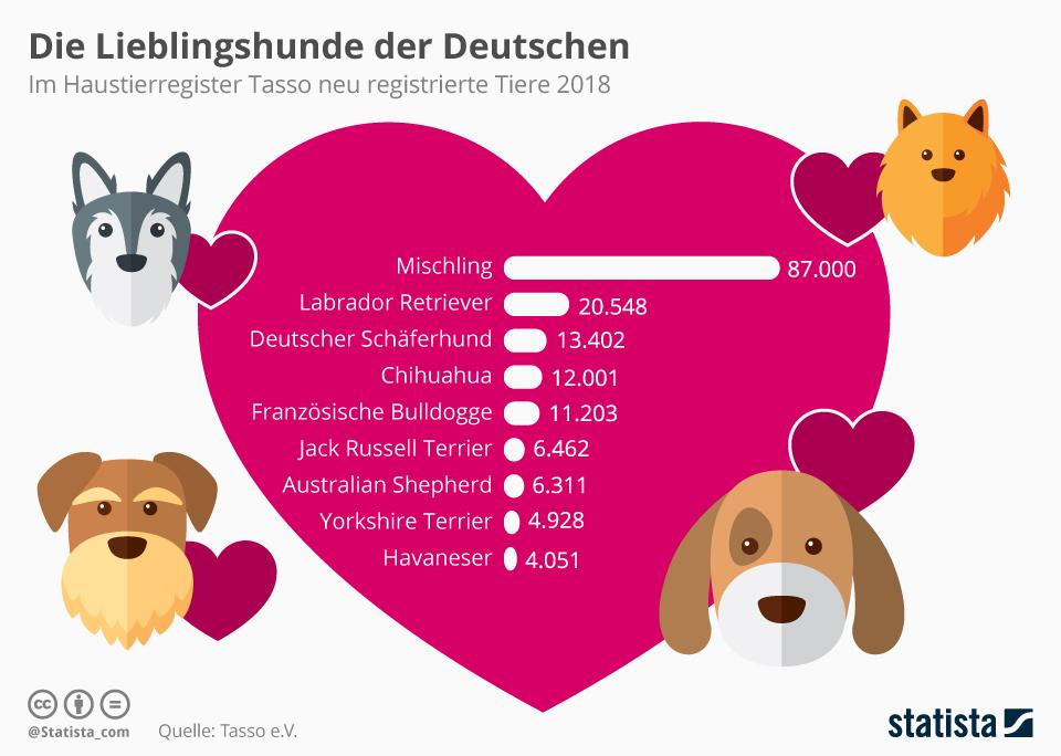 Infografik: Die Lieblingshunde der Deutschen | Statista
