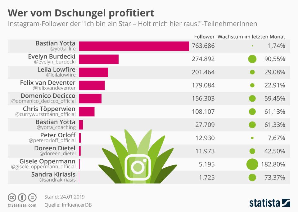 Infografik: Wer vom Dschungel profitiert | Statista