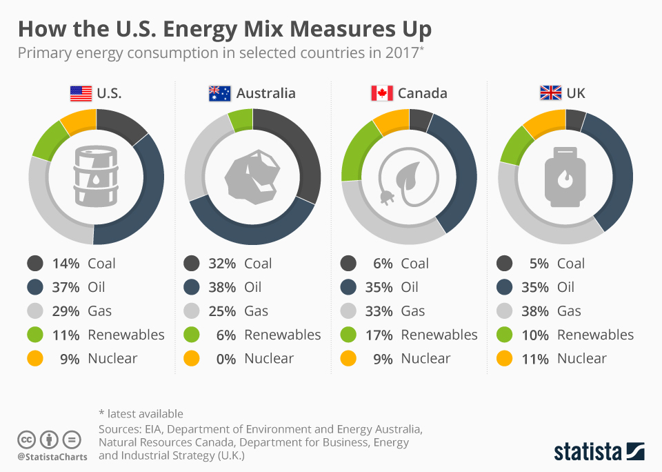 Infographic: How the U.S. Energy Mix Measures Up | Statista