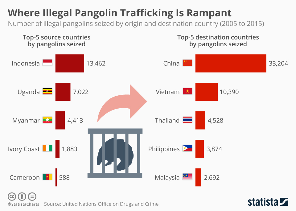 Infographic: Where Illegal Pangolin Trafficking Is Rampant  | Statista