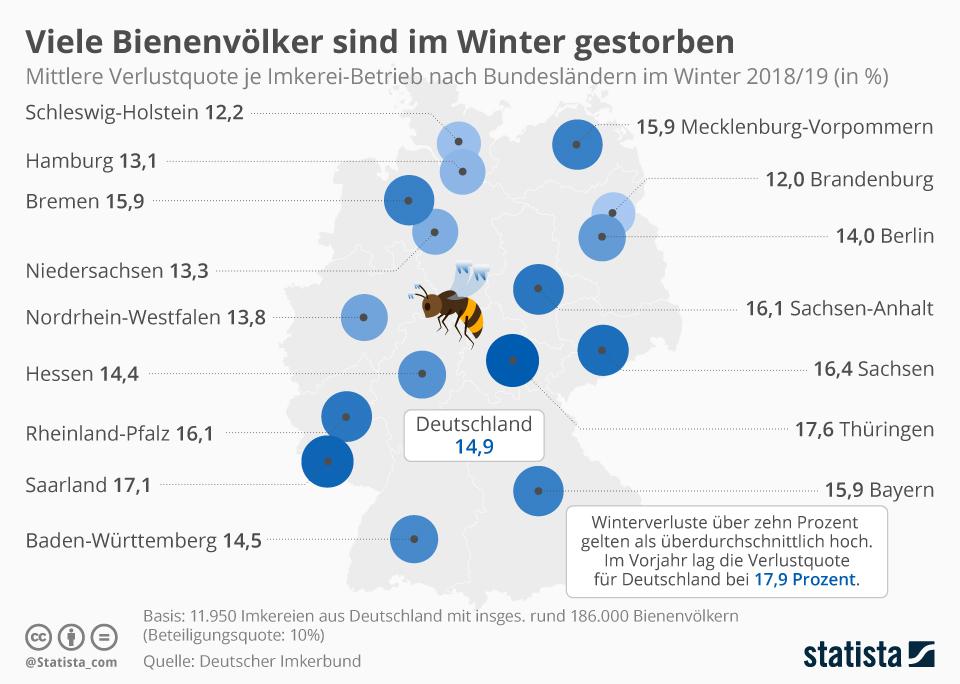 Infografik: Viele Bienenvölker sind im Winter gestorben   Statista