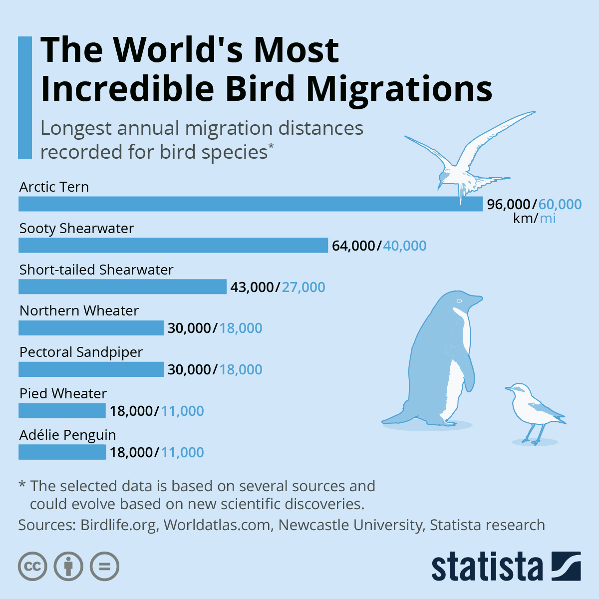 Infographic: The World's Most Incredible Bird Migrations | Statista