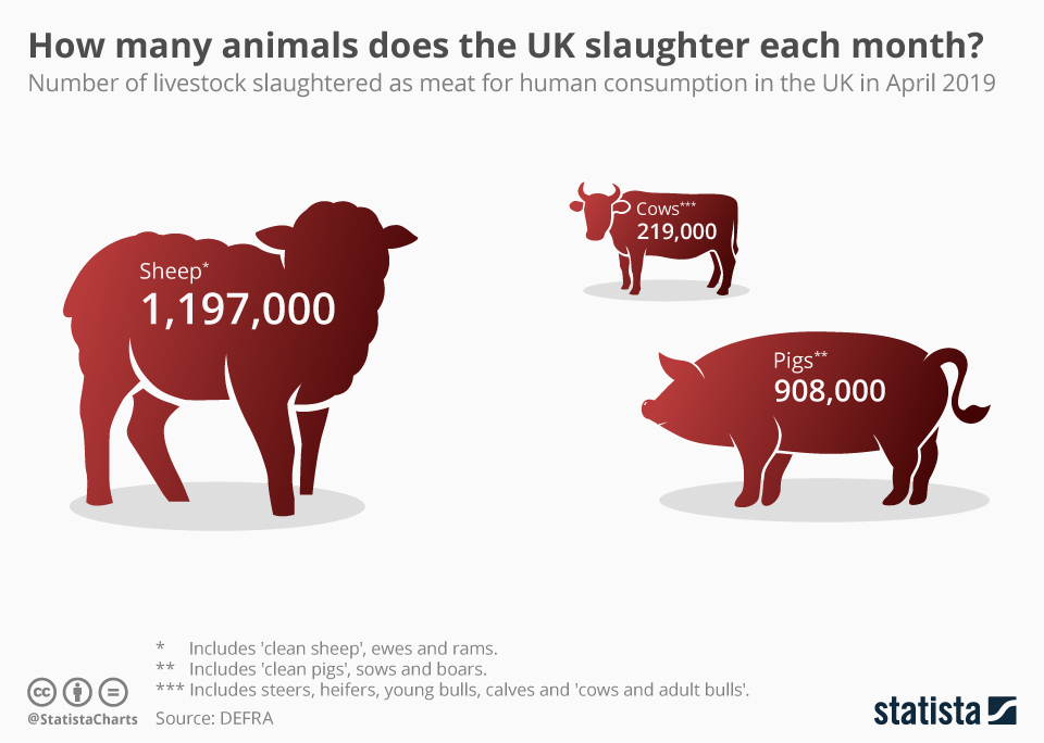 Infographic: How many animals does the UK slaughter each month? | Statista