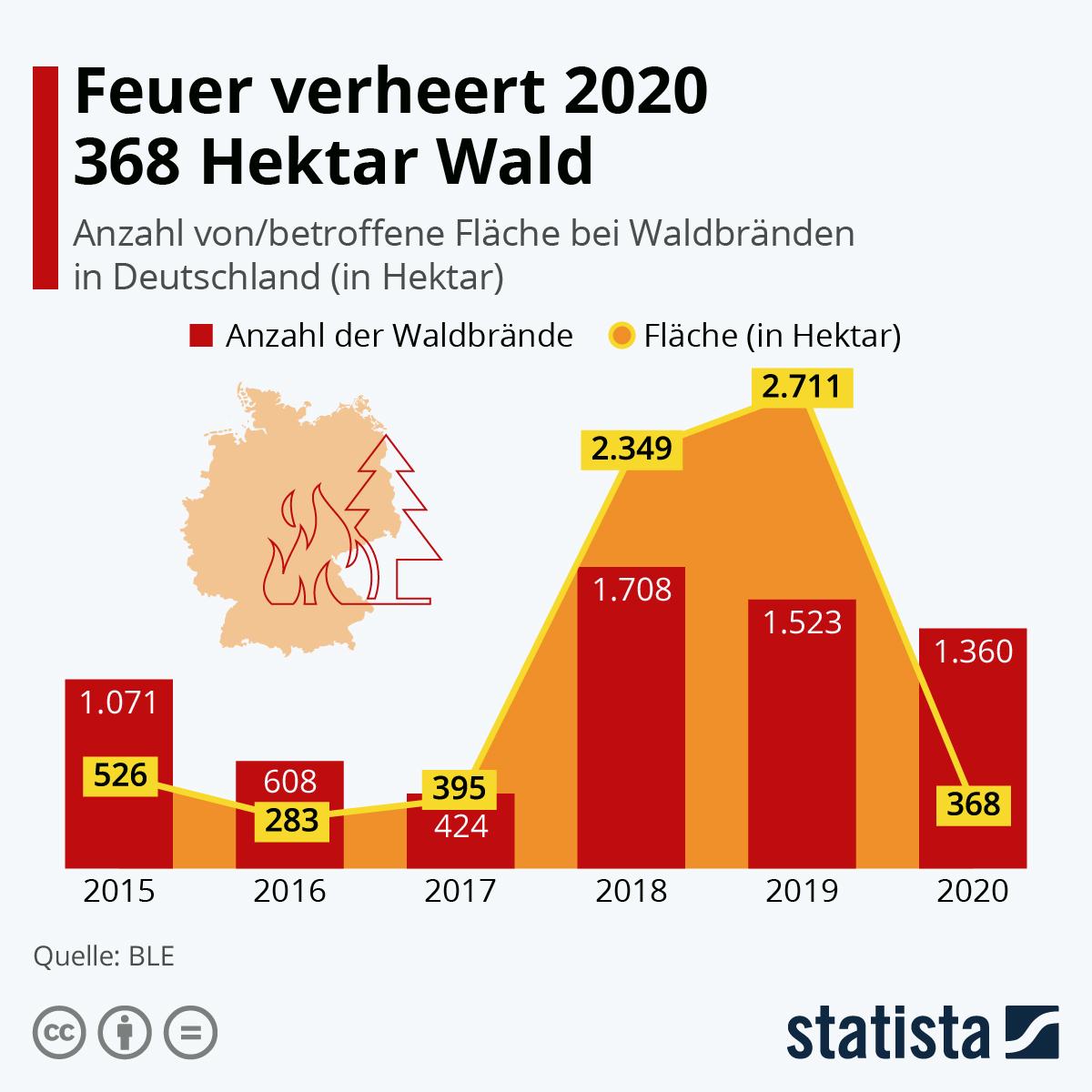 Infografik: Feuer verheert 2020 368 Hektar Wald | Statista