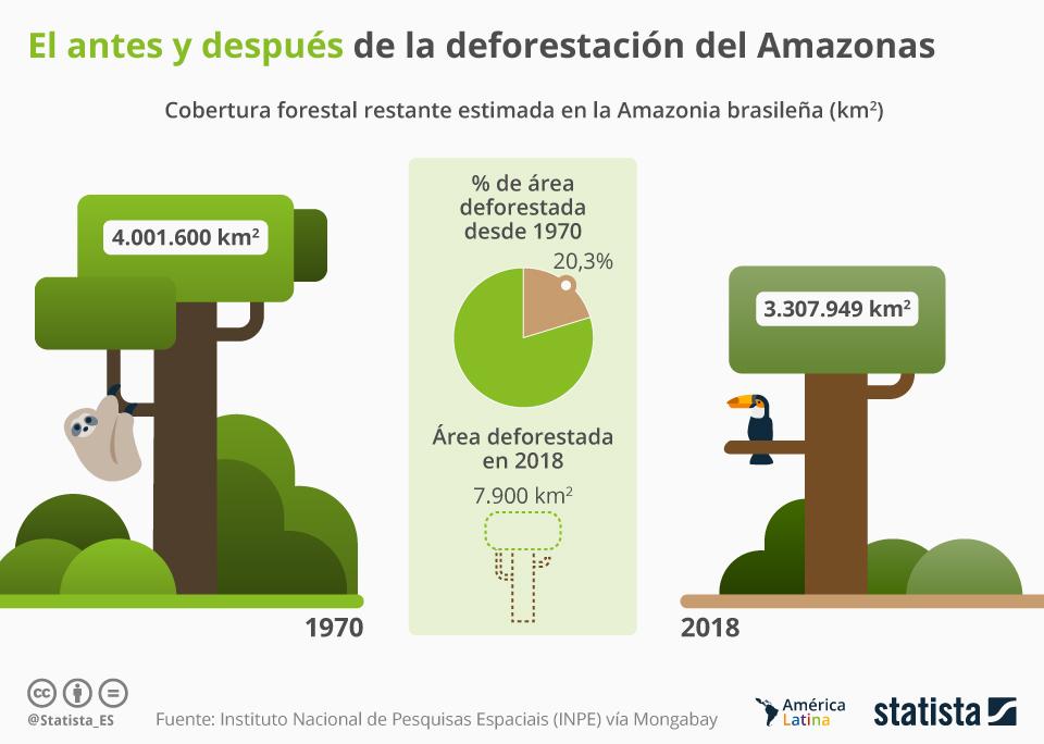 Infografía: ¿Cuánta superficie del Amazonas brasileño todavía se conserva? | Statista