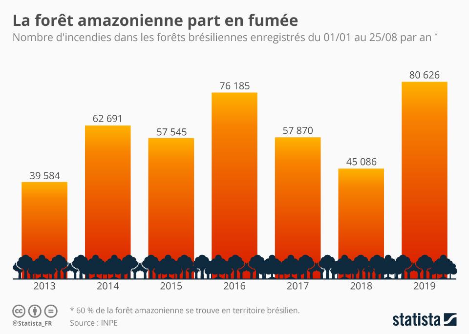 Infographie: La forêt amazonienne part en fumée | Statista