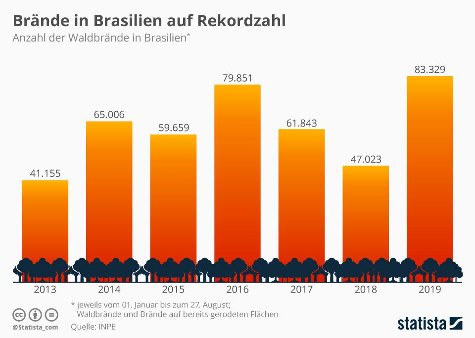 Infografik: Der Regenwald brennt | Statista