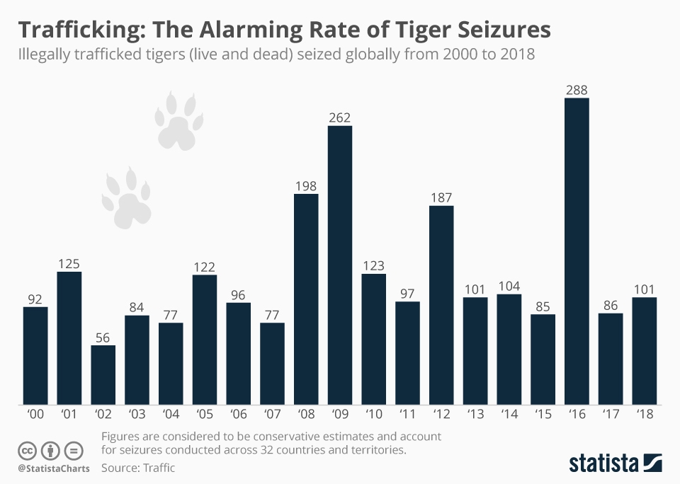 Infographic: Trafficking: The Alarming Rate of Tiger Seizures | Statista