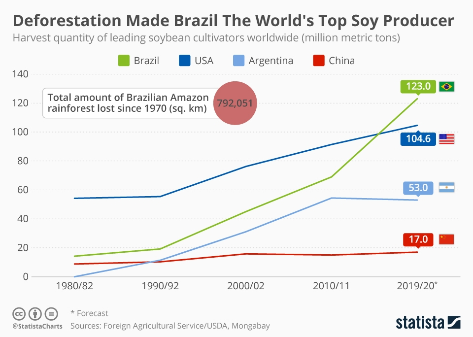 Infographic: Deforestation Made Brazil The World's Top Soy Producer | Statista