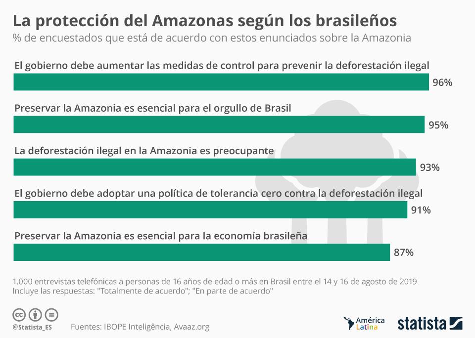Infografía: Los brasileños demandan a Bolsonaro más medidas sobre el Amazonas | Statista