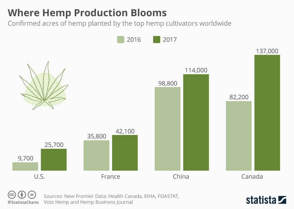 Infographic: Where Hemp Production Blooms | Statista