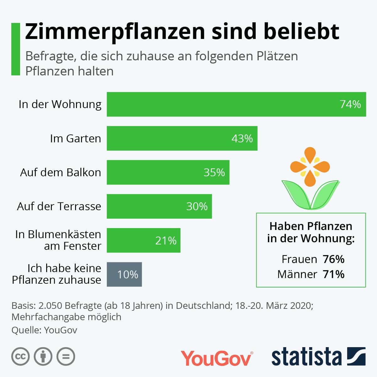 Infografik: Zimmerpflanzen sind beliebt | Statista
