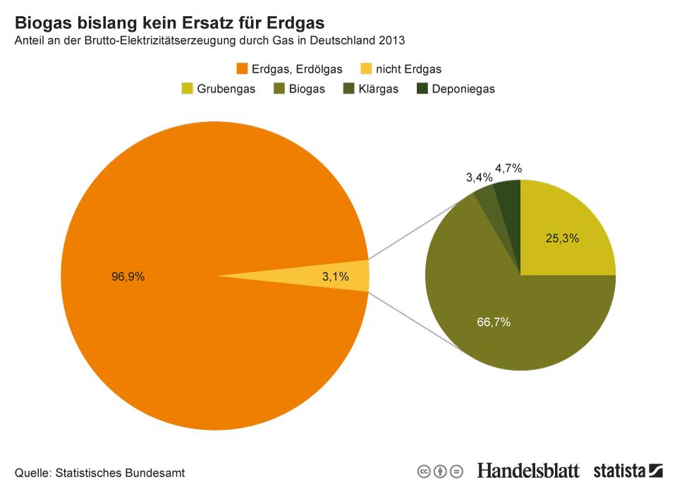 Infografik: Biogas bislang kein Ersatz für Erdgas | Statista