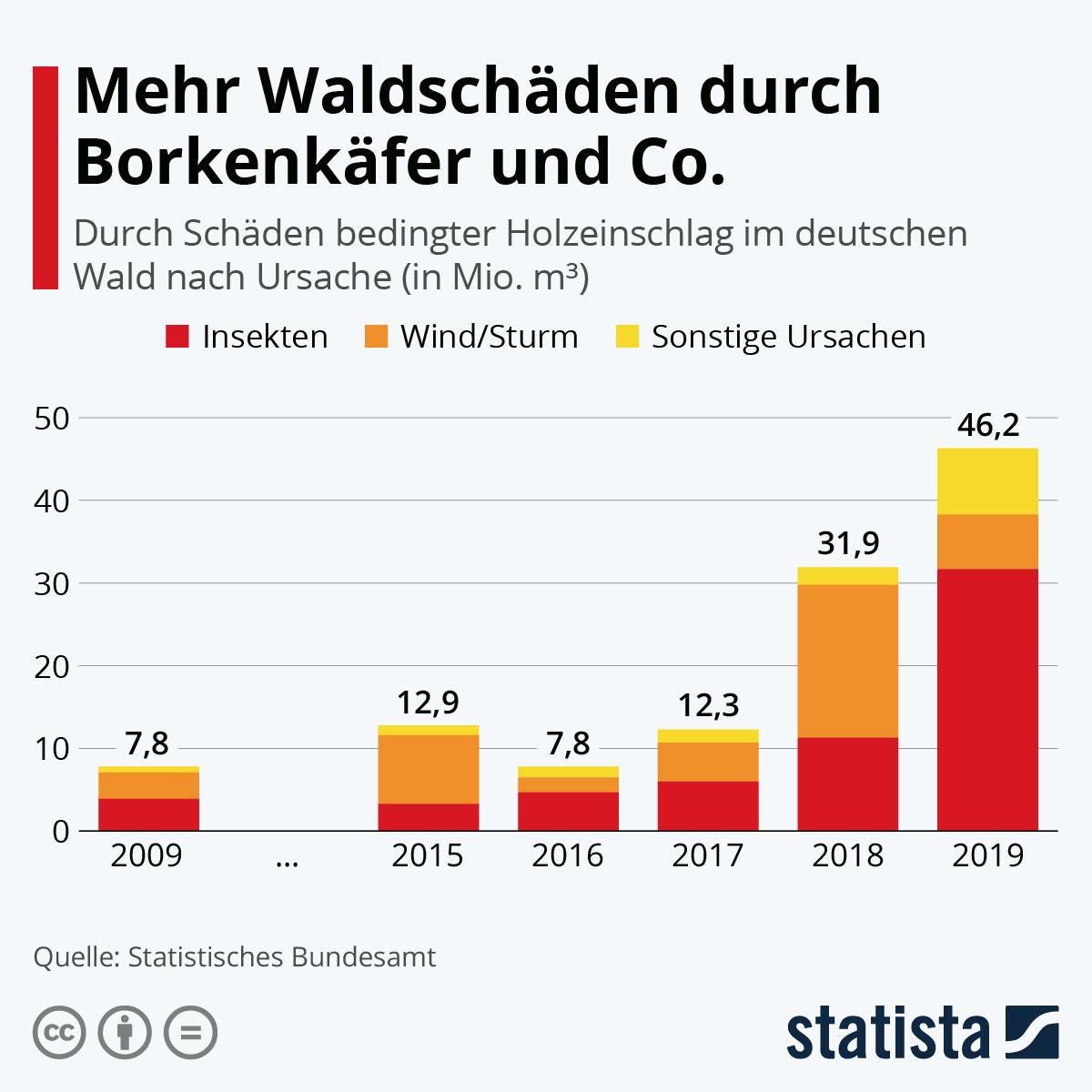 Infografik: Mehr Waldschäden durch Borkenkäfer und Co. | Statista