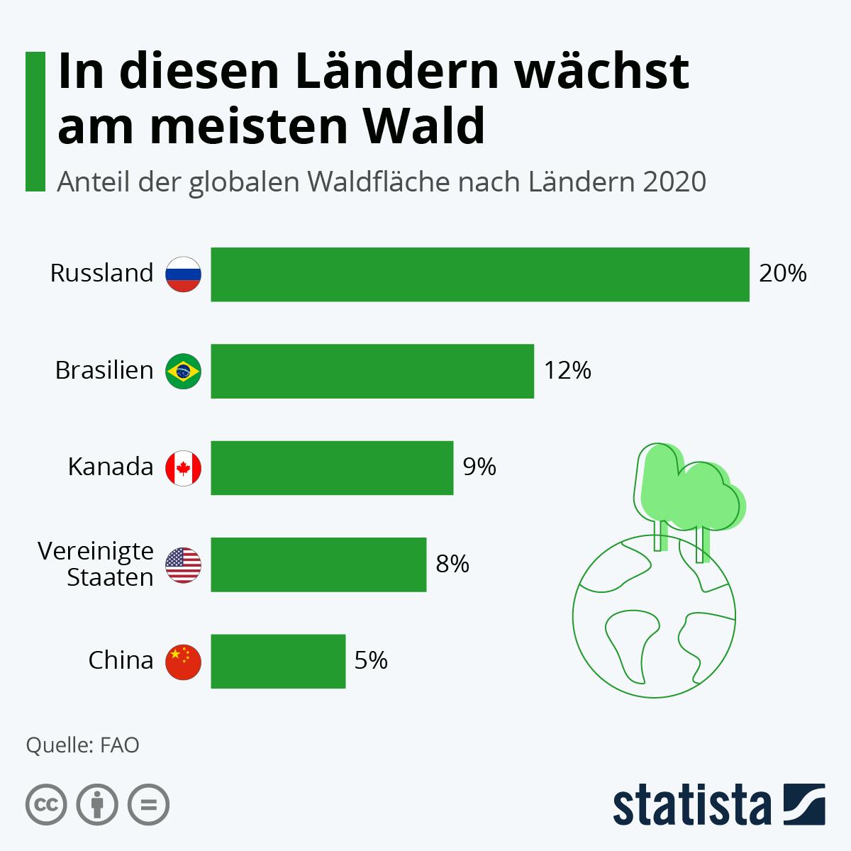 Infografik: In diesen Ländern wächst am meisten Wald | Statista