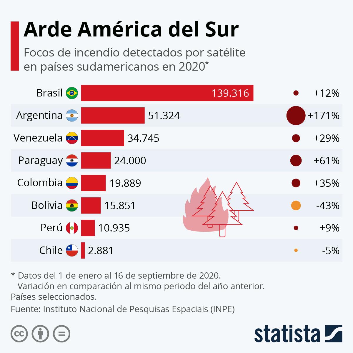 Infografía: Los países sudamericanos más afectados por los incendios | Statista