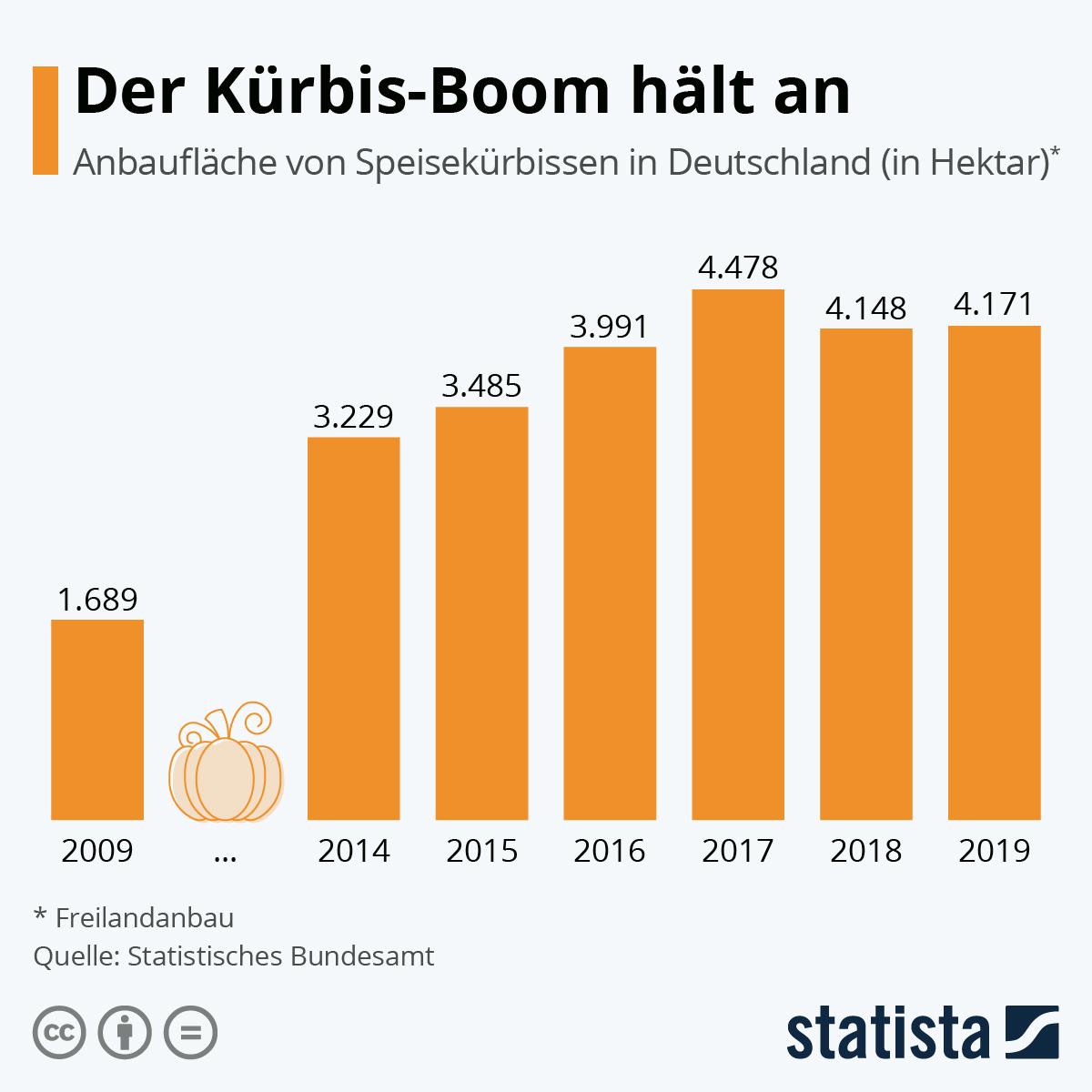 Infografik: Der Kürbis-Boom hält an | Statista