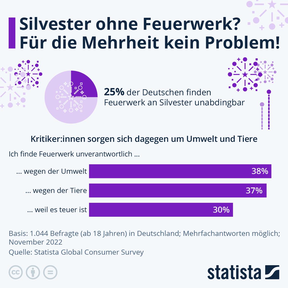 Infografik: 1/4 der Deutschen kann nicht ohne Feuerwerk   Statista