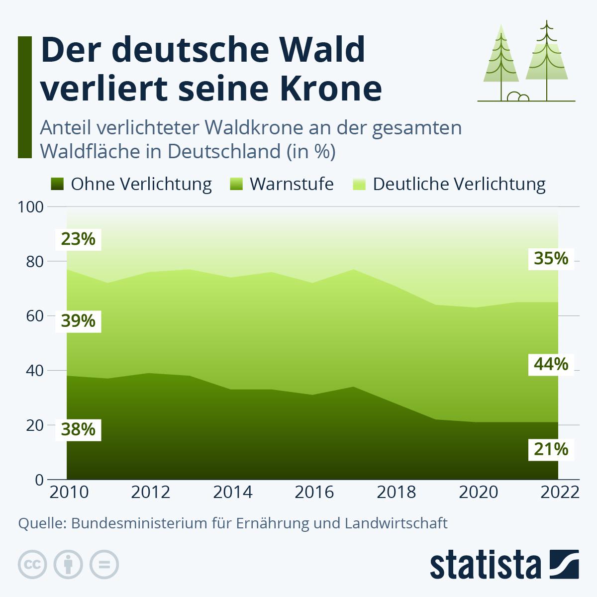 Infografik: Der deutsche Wald verliert seine Krone | Statista