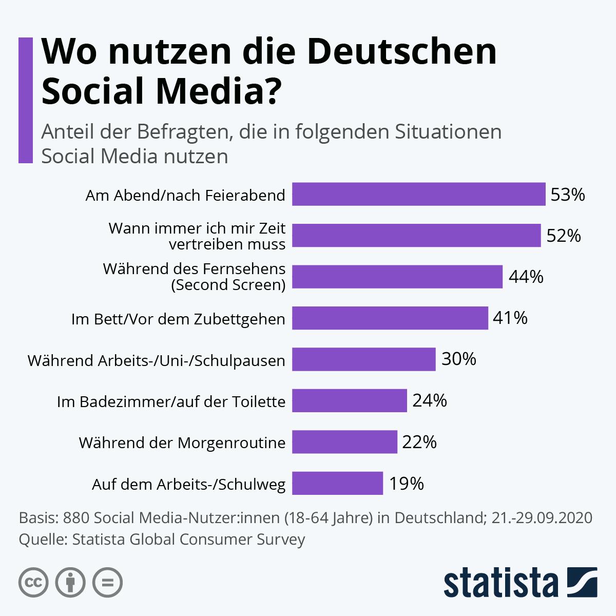 Infografik: Wo nutzen die Deutschen Social Media?   Statista