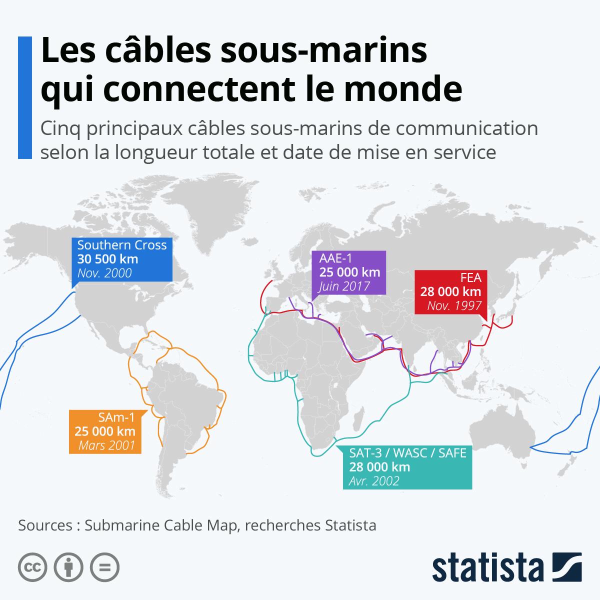 Infographie: Internet : ces câbles sous-marins qui connectent le monde   Statista