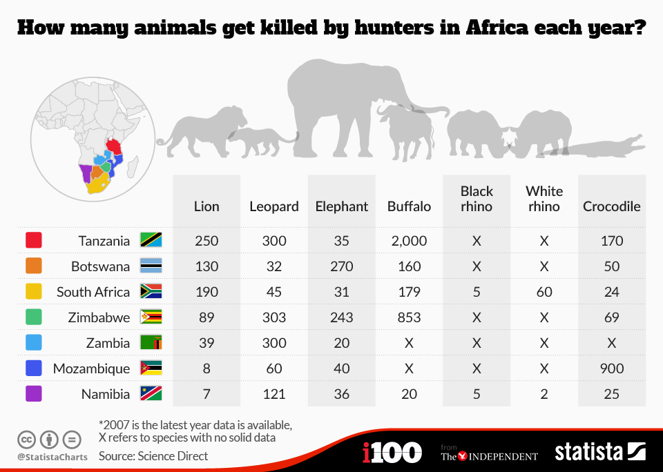 Infographic: How many animals get killed by hunters in Africa each year?  | Statista