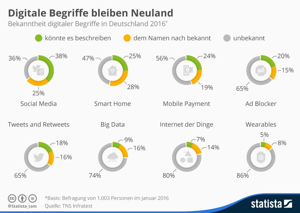 Infografik: Digitale Begriffe bleiben Neuland | Statista