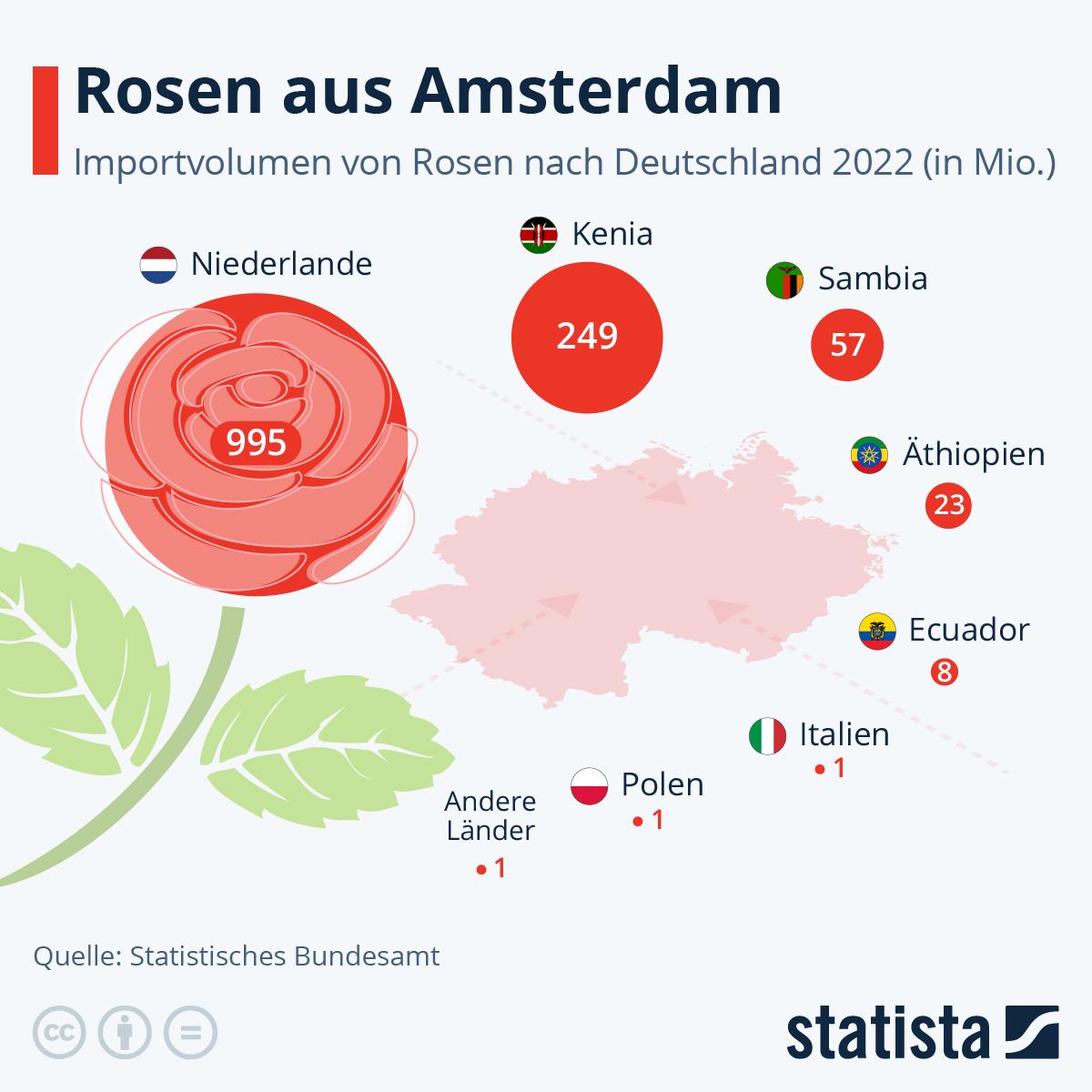 Infografik: Woher die Rosen kommen | Statista