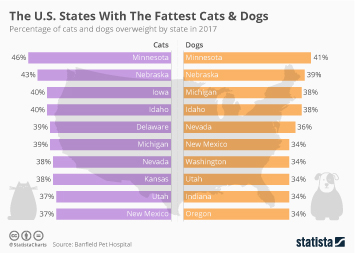 Link to Pet food industry in the United States Infographic - The U.S. States With The Fattest Cats & Dogs  Infographic