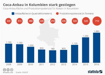 Infografik -  Coca-Anbauflaeche und Produktionspotenzial fuer Kokain in Kolumbien