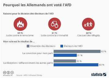 Infographie - Pourquoi les Allemands ont voté l'AfD