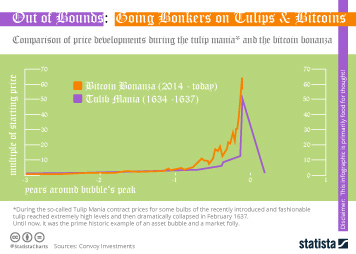 Infographic - Price developments during the tulip mania and the bitcoin bonanza