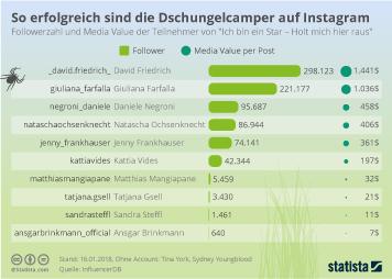 Infografik - So erfolgreich sind die Dschungelcamper auf Instagram