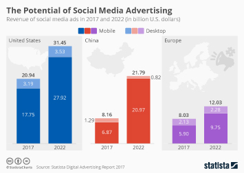 The Potential of Social Media Advertising
