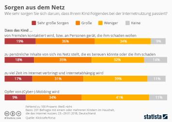 Infografik: Sorgen aus dem Netz | Statista