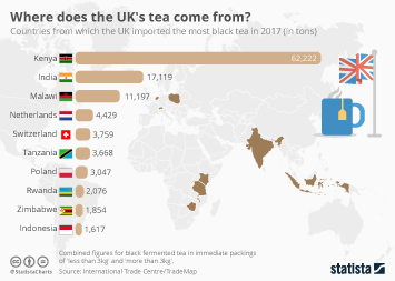 Tea Market Infographic - Where does the UK's tea come from?