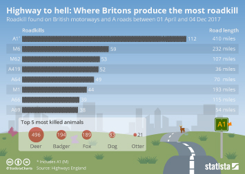 Infographic: Highway to hell: Where Britons produce the most roadkill | Statista